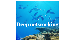 Deep networking